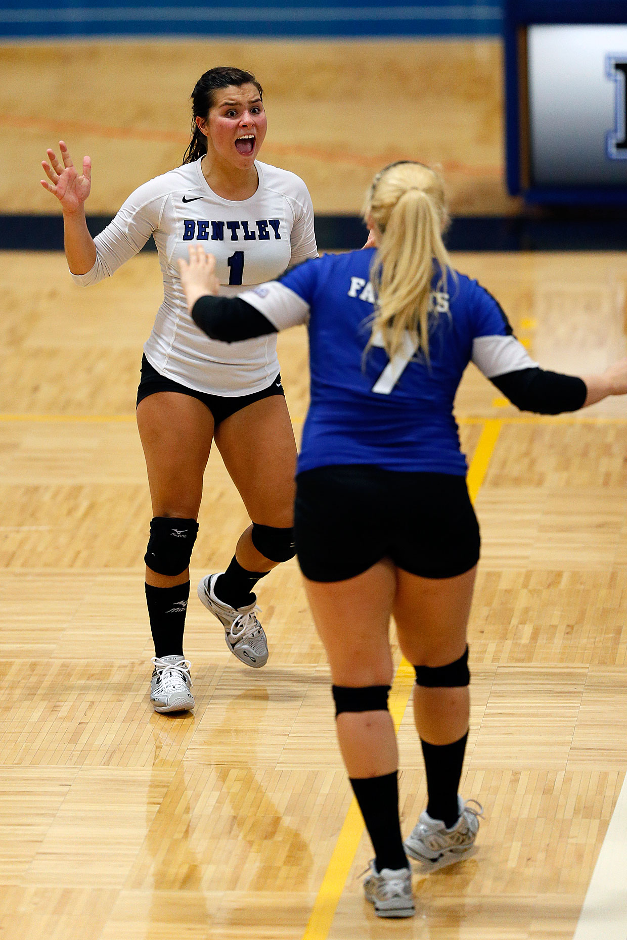 Bentley University volleyball players celebrate during a match against Merrimack.